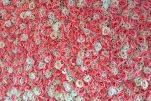 květinová stěna z umělůých růží - příplatkové pozadí